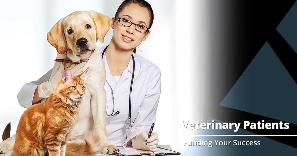 Should Your Veterinary Practice Expand to Exotics?