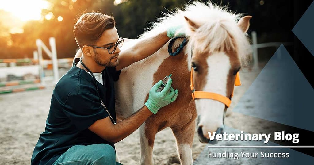 Why Your Veterinary Website Needs a Blog