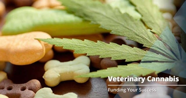 Intro to Cannabis in Veterinary Practice